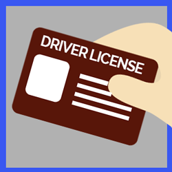 driverlicence.png